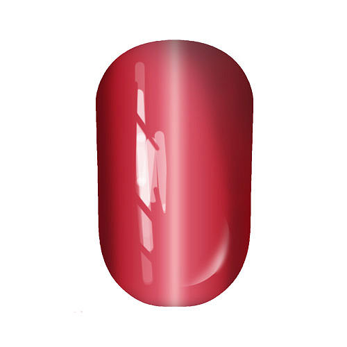 Gel Polish Cats eye №10 10 мл