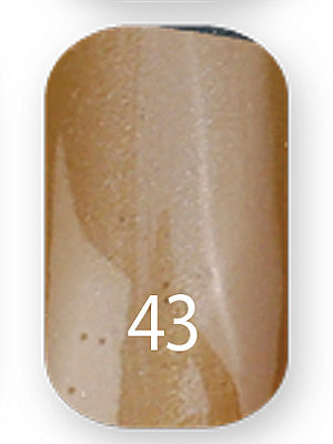 Gel Polish Cats eye №43 10 мл