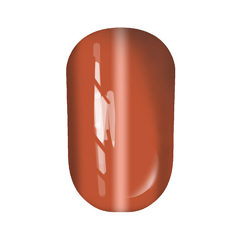 Gel Polish Cats eye №44 10 мл